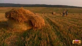 Baisée dans une botte de foin dans les champs
